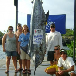 1st Lazy Marlin Tournament800