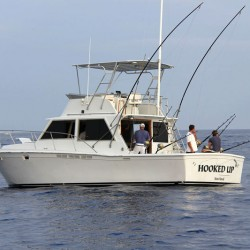 Hooked up boat800